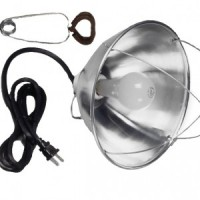 Incandescent Corded Clamp Lights